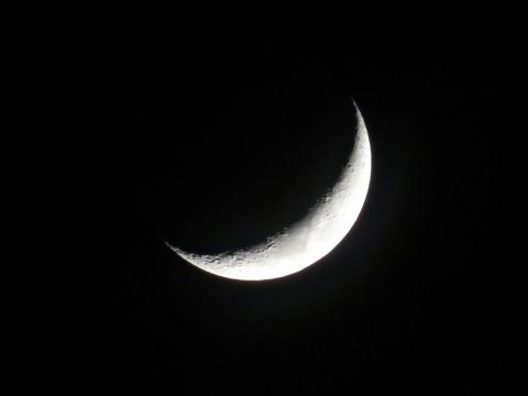 !!!_new_moon_!!!